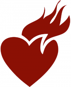 heart - web