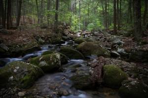 hiking-1840234_960_720