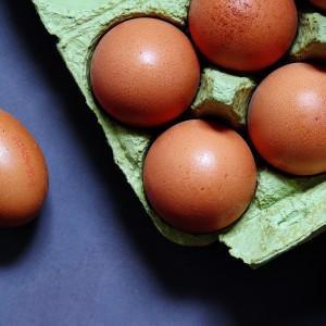 egg-1803361_1920